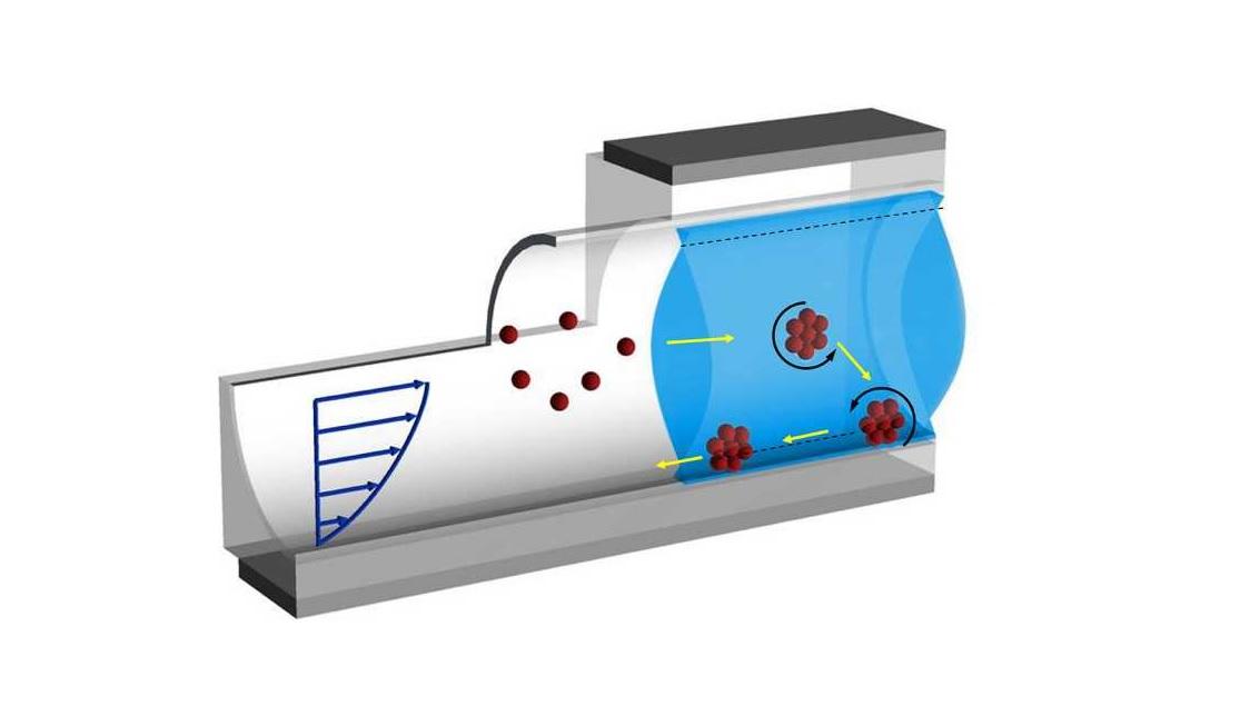 Swiss micro-vehicles navigate blood vessels upstream