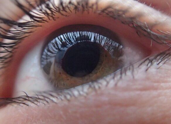 Rheon revolutionizes the treatment of glaucoma